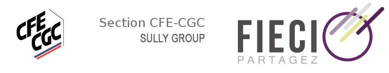 Site de la section CFE-CGC de Sully Group